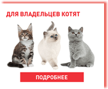 Корм Royal Canin (Роял Канин) для кошек – купить корма в